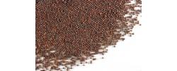 Mustar Negru Seminte 30 g